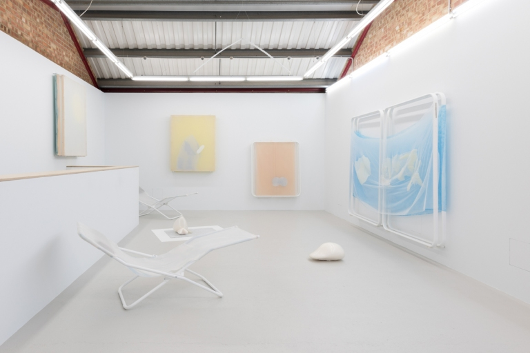 I think mango you say salmon, installation view 2